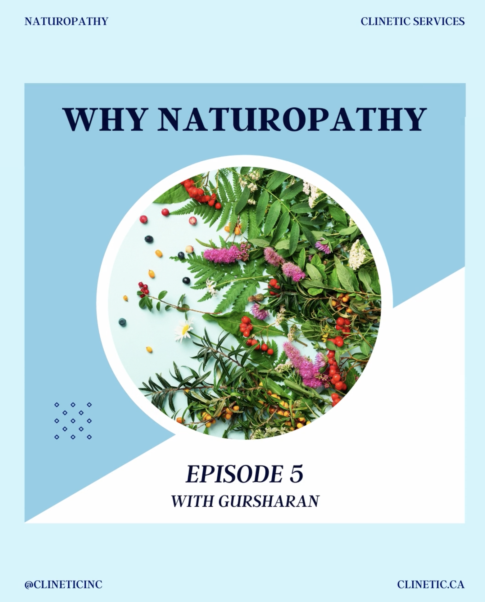 Why Naturopathy? (Part 5)